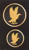 but-goldeneagle